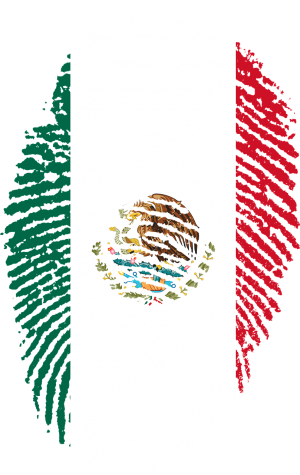 SDCCD is an immigrant safe-space