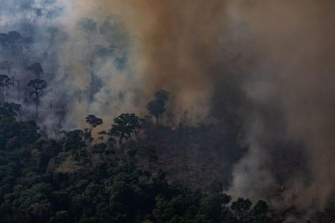 In this aerial image, a fire burns in a section of the Amazon rain forest on August 25, 2019 in the Candeias do Jamari region near Porto Velho, Brazil. (Victor Moriyama/Getty Images/TNS) *FOR USE WITH THIS STORY ONLY*