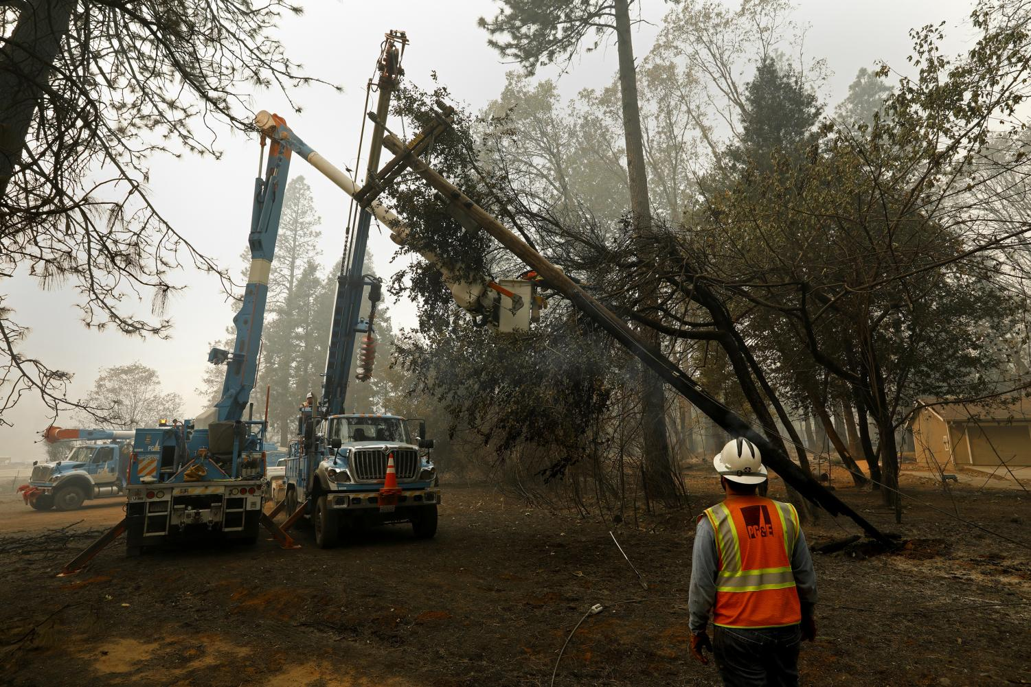 Utility workers cut down trees to avoid downing of power lines during Santa Ana winds