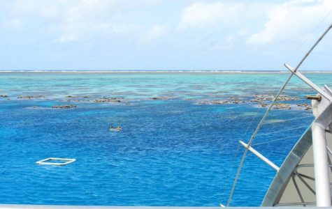 Great Barrier Reef Color Bleaching Epidemic