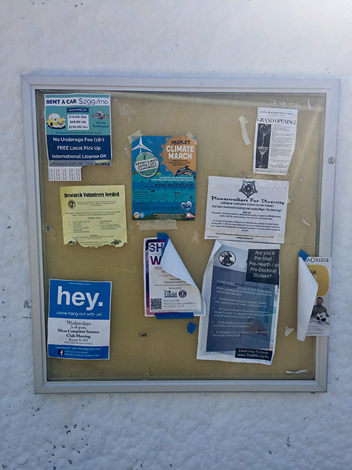 Flyers posted around the Mesa College campus, the blue one on the bottom right is the focus of this story.