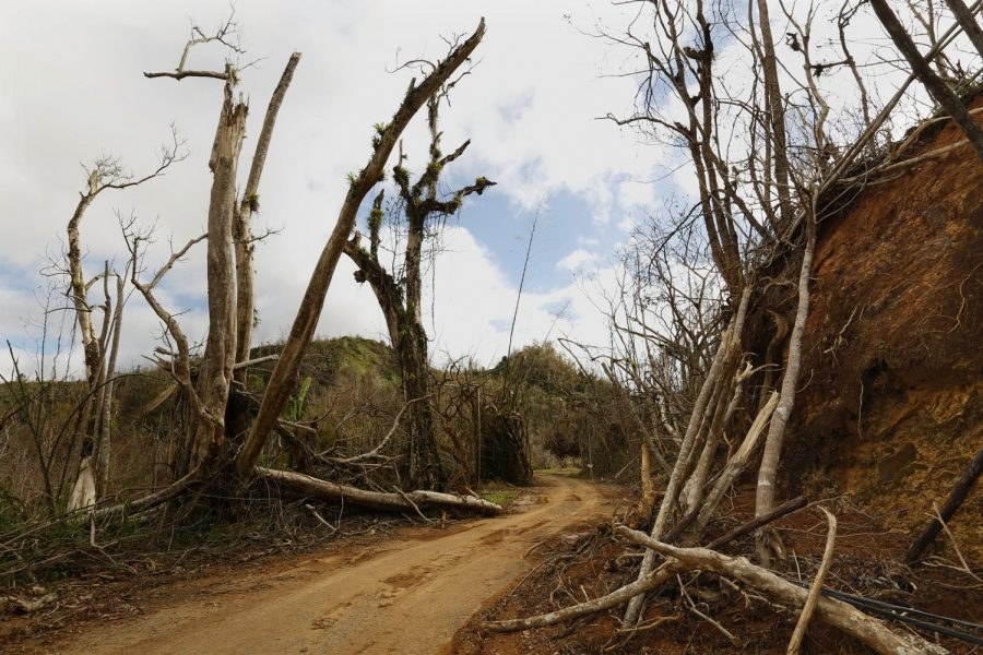 The mountain town of Juyaya, Puerto Rico, is one of the most remote on the island, and help was slow to arrive due to roads blocked by landslides and fallen trees. This is the road from Ciales to Jayuya.