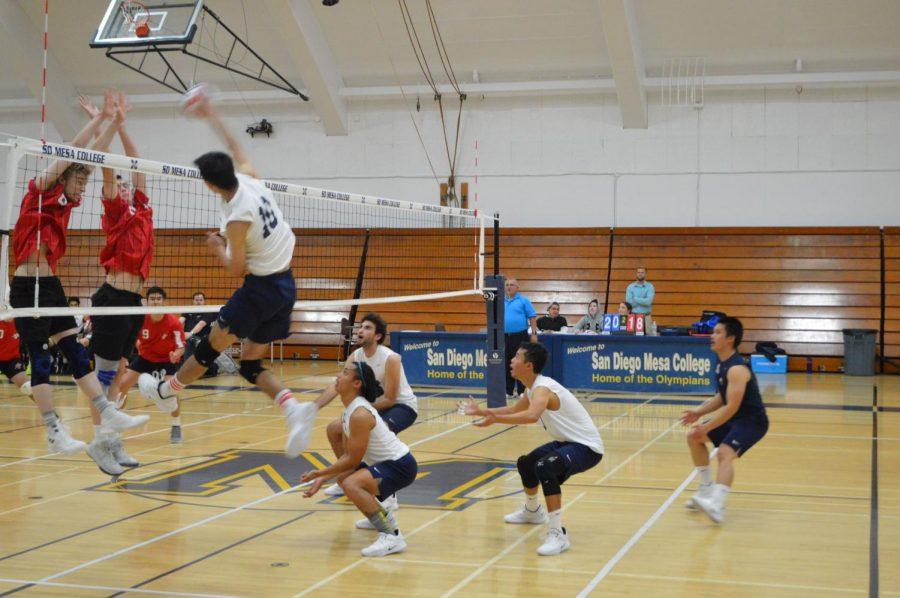 Mesa+Volleyball+Falls+to+Palomar+in+Inaugural+Series