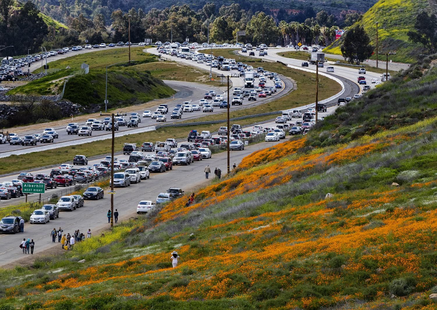 City of Lake Elsinore affected by the superbloom traffic.  Photo Credit: MCT Campus