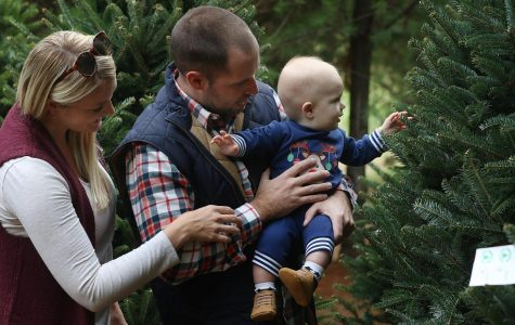 Millennials Are Sleighing Christmas Tree Sales